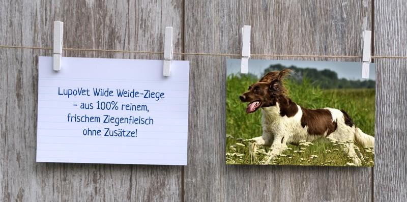 lupovet_notiz_wilde_weideziege