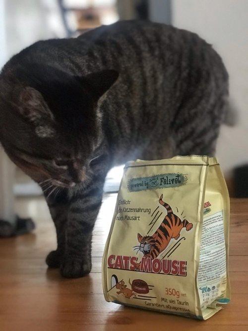 Prinz_mit_catsmouse