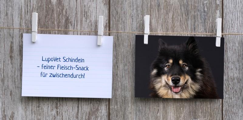 lupovet_notiz_schindeln