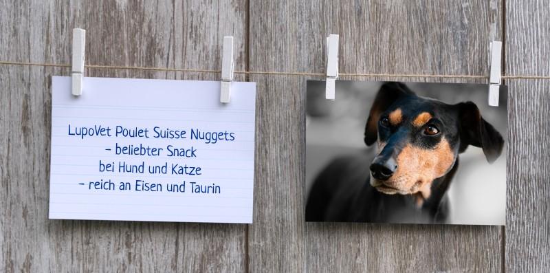 lupovet_notiz_poulet_suisse_nuggets