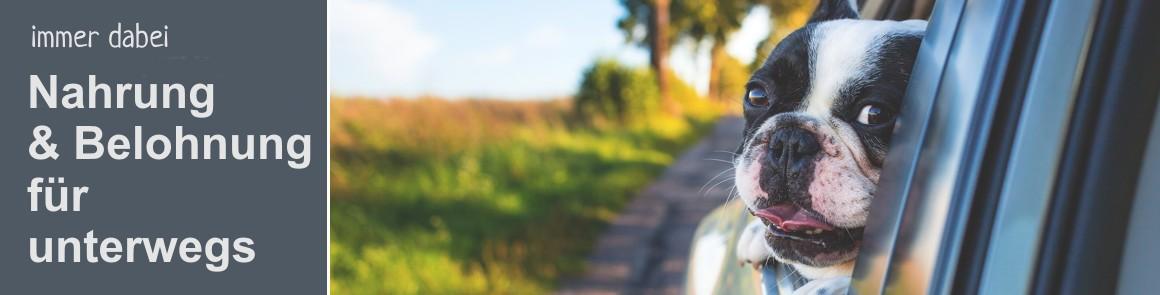 kat_unterwegs